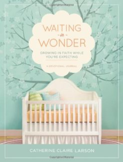 Waiting-in-Wonder-Growing-in-Faith-While-Youre-Expecting-0